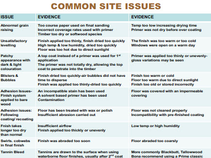 common site issues